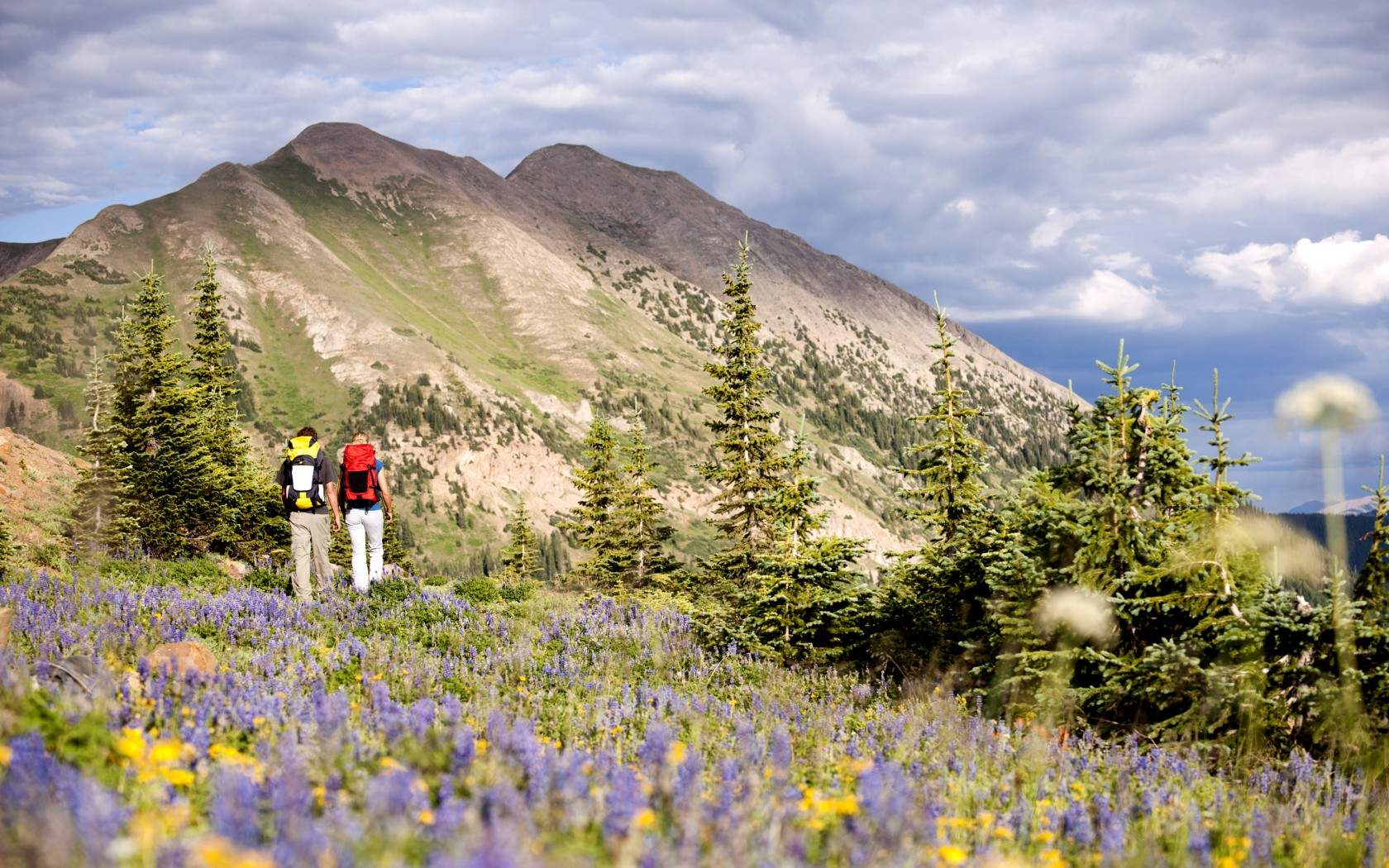 Crested Butte, The Rockies, Colorado